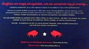 Skrzydełka Buffalo 4