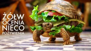 Funny Turtle Burger 4 Żorż